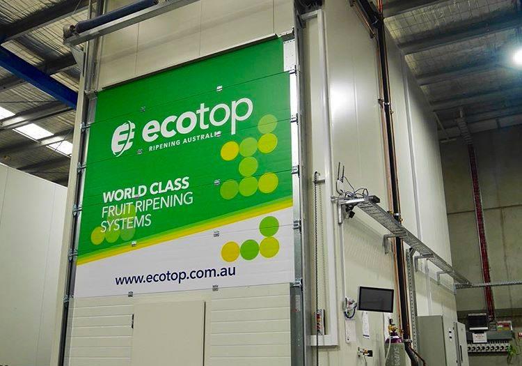 eco-top-2